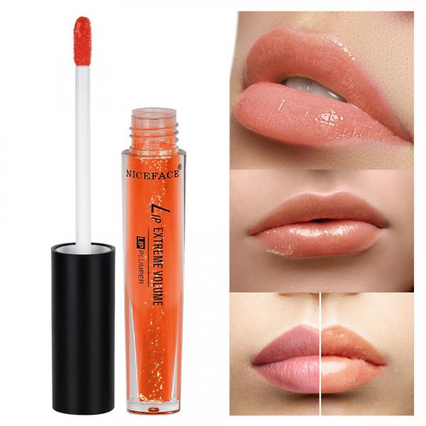 Poze Lip Gloss Extreme Volume Niceface #02