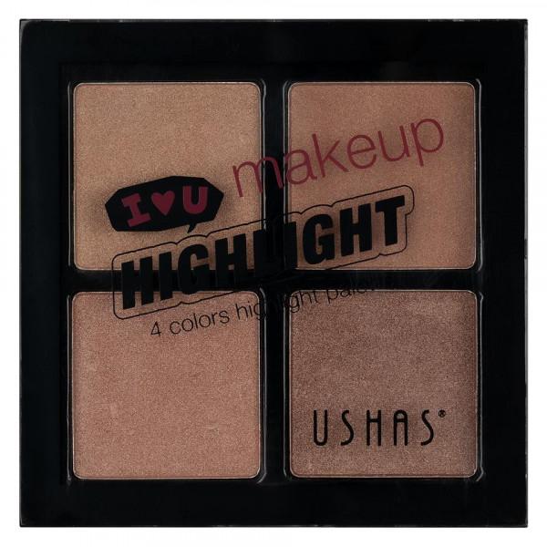 Poze Trusa Iluminator 4 culori Ushas #02