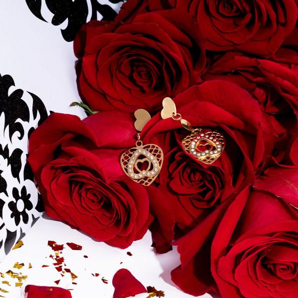 Poze Cercei Inox Hearts