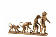 Aap Evolutie Poly Antiek Goud