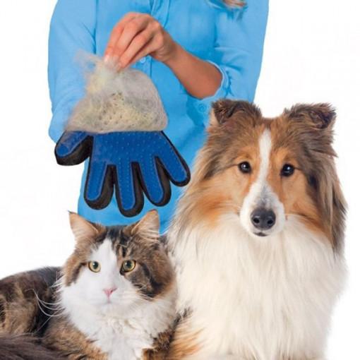 Manusa-perie pentru animale