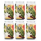 6 Pack - OWL OTUS JASMINE & GREEN TEA