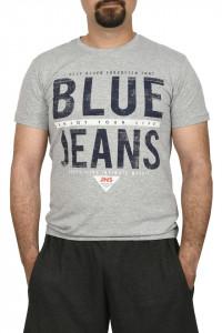 Tricou barbat, imprimeu Blue Jeans, gri