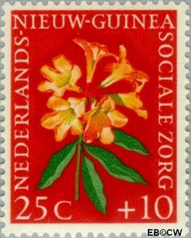 Nieuw-Guinea NG 59  1959 Sociale zorg 25+10 cent  Gestempeld