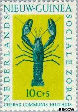 Nieuw-Guinea NG 79  1962 Sociale zorg 10+5 cent  Gestempeld