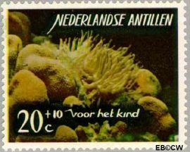 Nederlandse Antillen NA 366  1965 Zeeleven 25 cent  Postfris