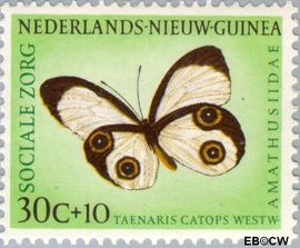 Nieuw-Guinea NG 66  1960 Sociale zorg 30+10 cent  Gestempeld