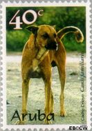 Aruba AR 228  1999 Honden 40 cent  Gestempeld