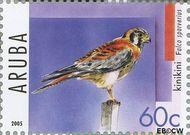 Aruba AR 343  2005 Roofvogels 60 cent  Gestempeld