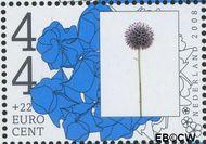 Nederland NL 2567b  2008 Vergeet-ze-niet 44+22 cent  Gestempeld