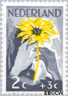 Nederland NL 538  1949 Zonnebloem 2+3 cent  Postfris