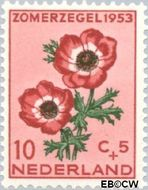 Nederland NL 605  1953 Bloemen 10+5 cent  Postfris