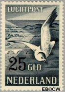 Nederland NL LP13  1951 Postpakketten 2500 cent  Gestempeld