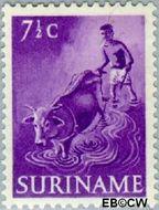 Suriname SU 301  1953 Inheemse voorstellingen 7½ cent  Gestempeld