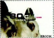 Nederland NL 1781  1998 Huisdieren 80 cent  Gestempeld