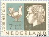 Nederland NL 614  1953 Kinderhoofden 7+5 cent  Postfris