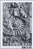 Nederland NL 767  1962 Museumvoorwerpen 6+4 cent  Gestempeld