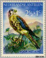 Nederlandse Antillen NA 271  1958 Vogels 2½+1 cent  Gestempeld