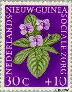 Nieuw-Guinea NG 60  1959 Sociale zorg 30+10 cent  Gestempeld