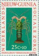 Nieuw-Guinea NG 80  1962 Sociale zorg 25+10 cent  Gestempeld