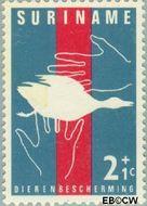 Suriname SU 390  1962 Dierenbescherming 2+1 cent  Gestempeld