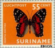 Suriname SU LP55  1972 Vlinders 55 cent  Gestempeld