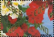 Nederland NL 2502  2007 Bloemetje cadeau 44 cent  Gestempeld