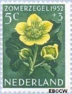Nederland NL 584  1952 Bloemen 5+3 cent  Gestempeld