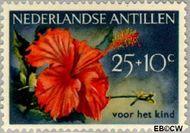 Nederlandse Antillen NA 252  1955 Bloemen 25+10 cent  Gestempeld