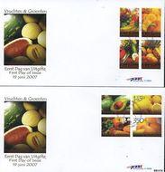 Nederlandse Antillen NA 296  2007 Groente en fruit 100 cent  FDC zonder adres