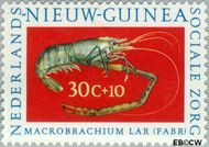 Nieuw-Guinea NG 81  1962 Sociale zorg 30+10 cent  Gestempeld