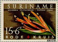 Suriname SU 381  1962 Surinaamse Rode Kruis 15+6 cent  Gestempeld