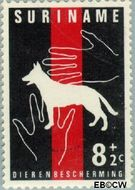 Suriname SU 391  1962 Dierenbescherming 8+2 cent  Gestempeld