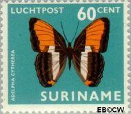 Suriname SU LP56  1972 Vlinders 60 cent  Gestempeld