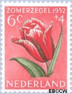 Nederland NL 585  1952 Bloemen 6+4 cent  Gestempeld