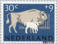 Nederland NL 815  1964 Dieren 30+9 cent  Postfris