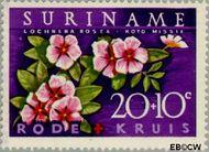 Suriname SU 382  1962 Surinaamse Rode Kruis 20+10 cent  Gestempeld