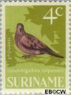 Suriname SU 442  1966 Vogels 4 cent  Gestempeld