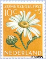 Nederland NL 586  1952 Bloemen 10+5 cent  Gestempeld
