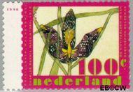 Nederland NL 1670  1996 Voorjaarsbloemen 100 cent  Gestempeld