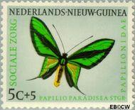 Nieuw-Guinea NG 63  1960 Sociale zorg 5+5 cent  Gestempeld