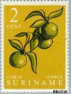 Suriname SU 355  1961 Inheemse vruchten 2 cent  Gestempeld