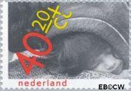 Nederland NL 1186  1979 Rechten kind 40+20 cent  Gestempeld