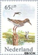 Nederland NL 1303  1984 Weidevogels 65+25 cent  Gestempeld