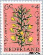 Nederland NL 739  1960 Bloemen 6+4 cent  Gestempeld