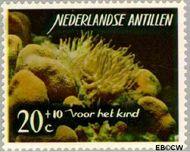 Nederlandse Antillen NA 366  1965 Zeeleven 20 cent  Gestempeld