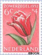 Nederland NL 585  1952 Bloemen 6+4 cent  Postfris