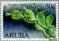 Aruba AR 224  1999 Cactussen 50 cent  Gestempeld