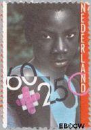 Nederland NL 1234  1981 Integratie en preventie 60+25 cent  Gestempeld