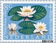 Nederland NL 740  1960 Bloemen 8+4 cent  Gestempeld
